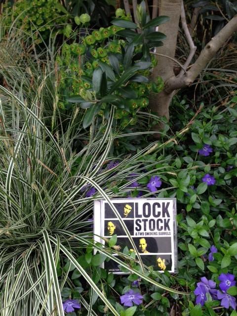 Lock Stock CD ジャケット お庭